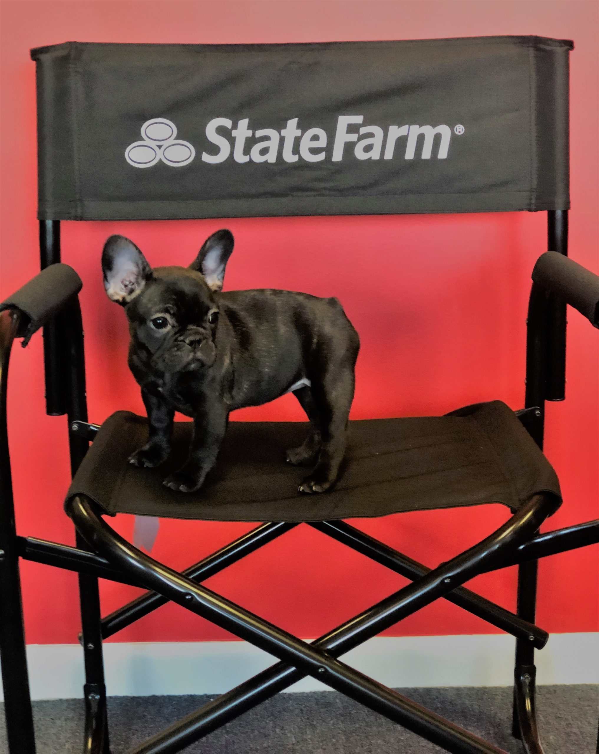Brian Topping – State Farm